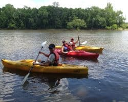 paddle boarding with kids on cape fear river in lillington, nc
